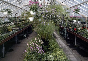 Green House Interior Best 25 Greenhouse interiors ideas on
