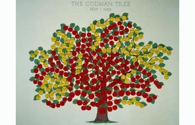 family_trees_-_395_x_253