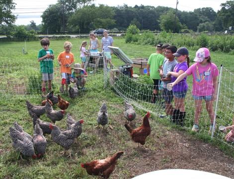 farm_friends_summer_camp_at_casey_farm_3_-_471_x_360