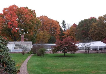 LYM 2014 Landscape conditions
