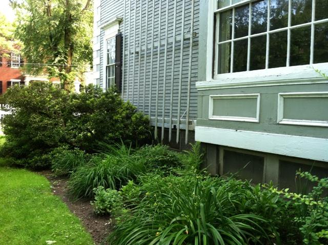 Garden Restoration At Phillips House